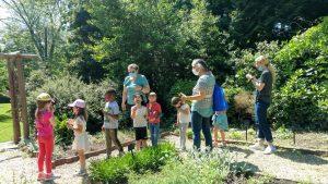 MGC Herb Garden Chair Anne Simms Exploring the Garden with Kindergartners from Millburn Co-Op Enrichment 5.18.21